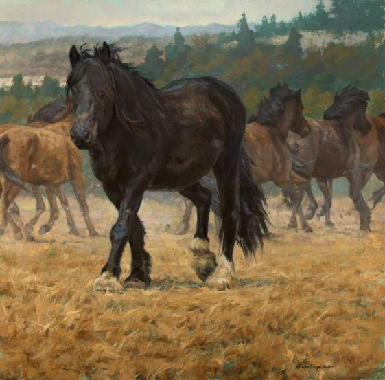 Julia Rogers | The Briscoe Western Art Museum